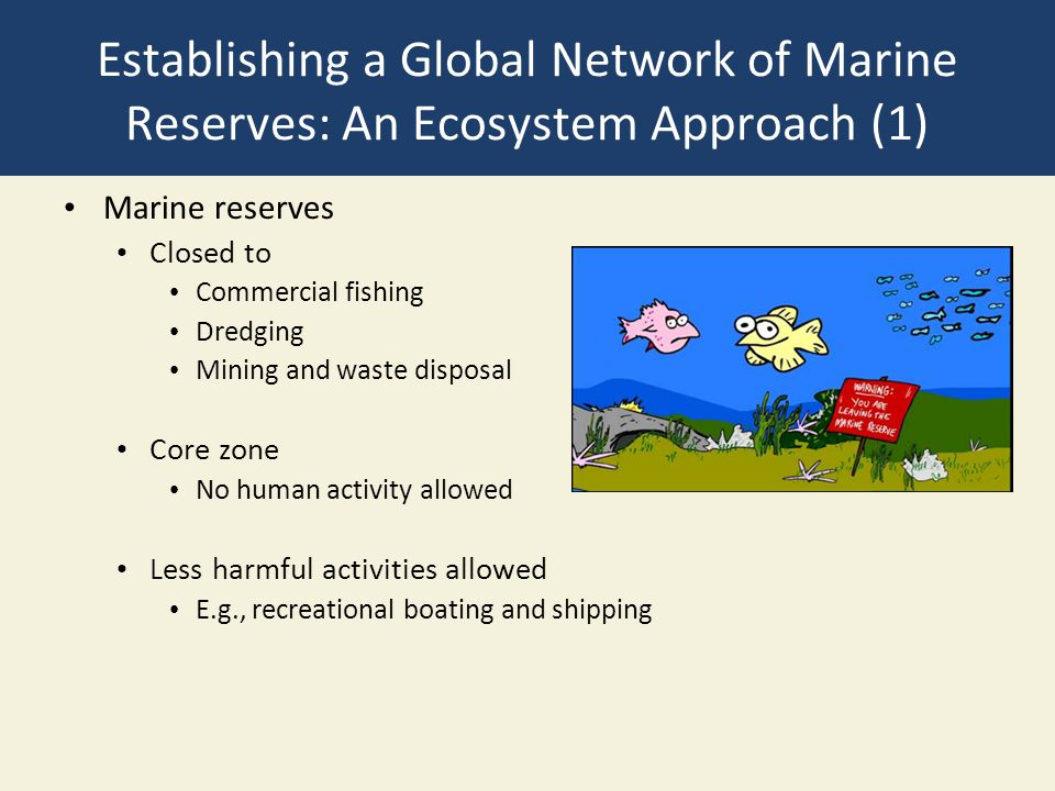 Establishing a Global Network of Marine Reserves: An Ecosystem Approach (1)