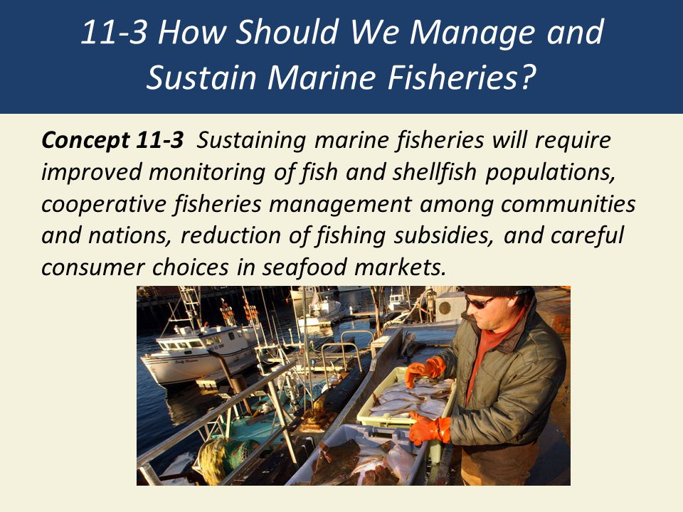 11-3 How Should We Manage and Sustain Marine Fisheries