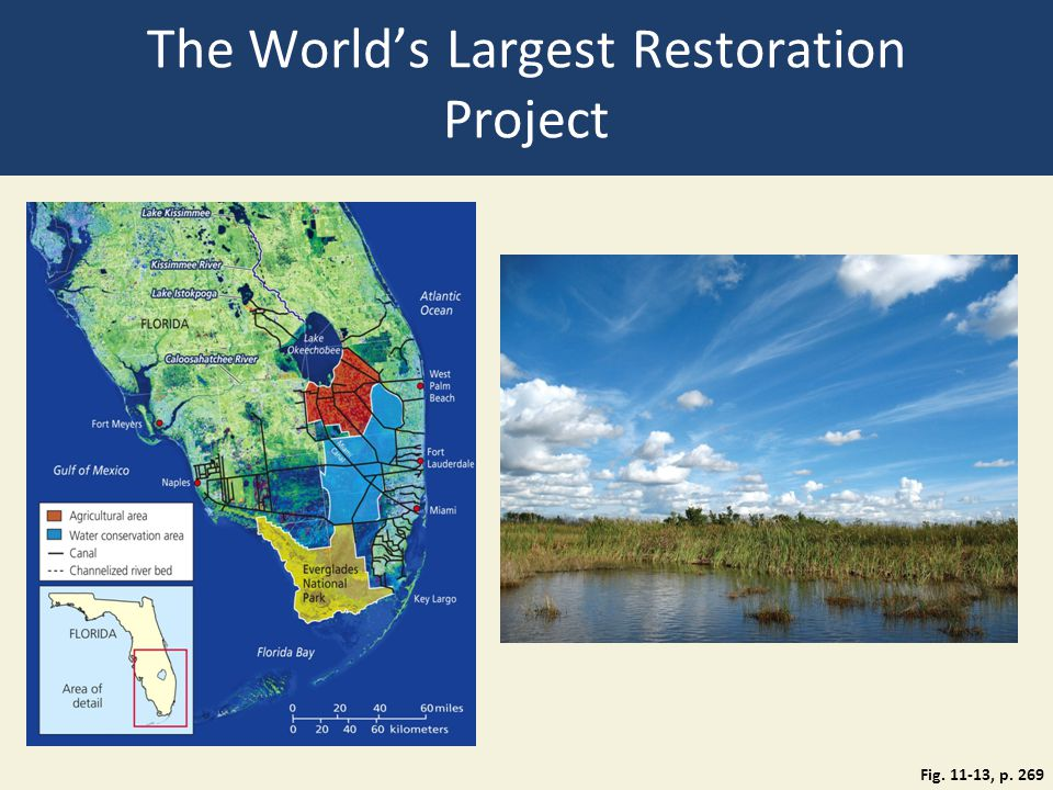 The World's Largest Restoration Project