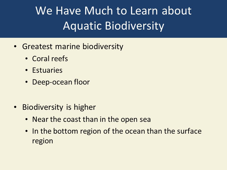 We Have Much to Learn about Aquatic Biodiversity