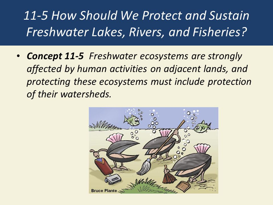 11-5 How Should We Protect and Sustain Freshwater Lakes, Rivers, and Fisheries