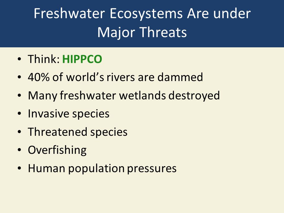 Freshwater Ecosystems Are under Major Threats