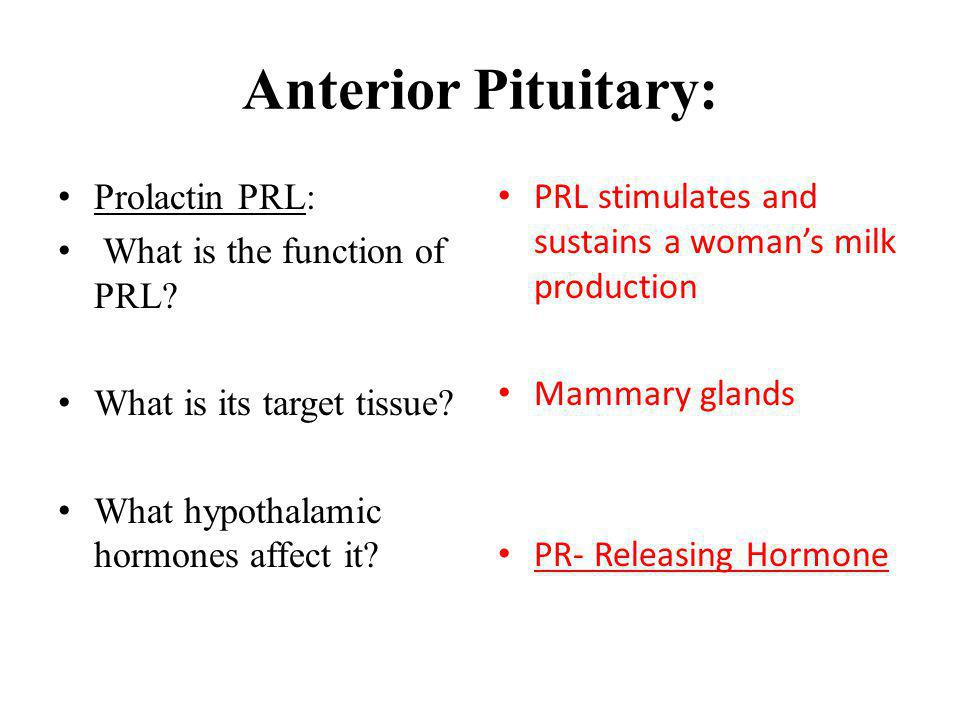 Anterior Pituitary: Prolactin PRL: What is the function of PRL