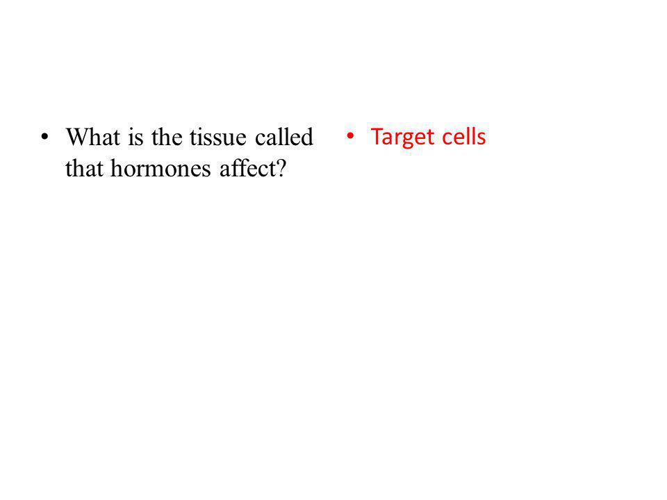 What is the tissue called that hormones affect