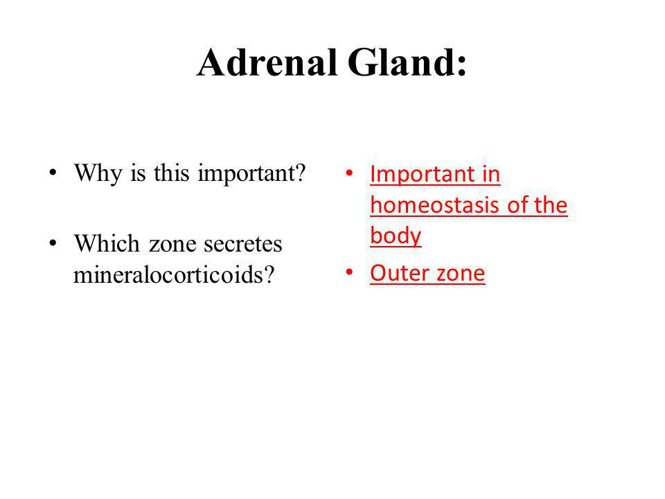 Adrenal Gland: Why is this important