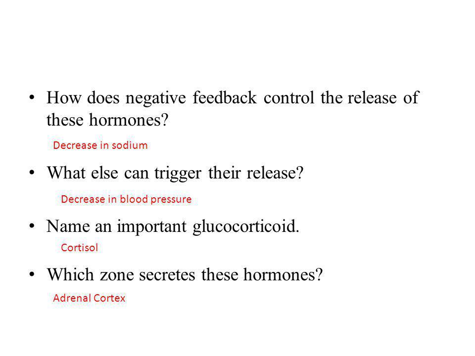 How does negative feedback control the release of these hormones