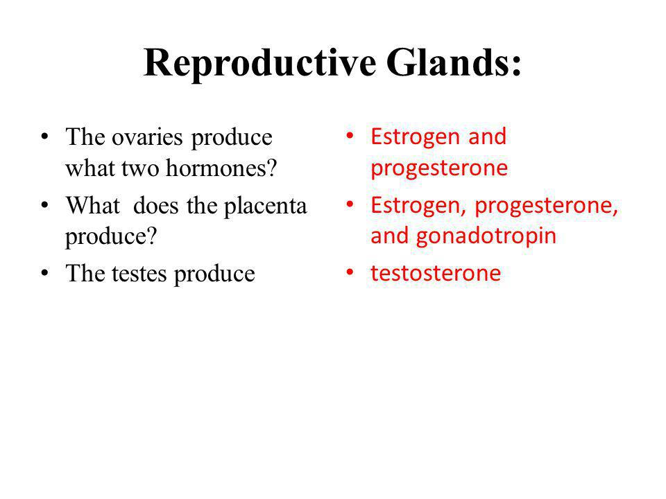 Reproductive Glands: The ovaries produce what two hormones