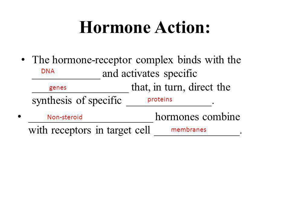 Hormone Action: