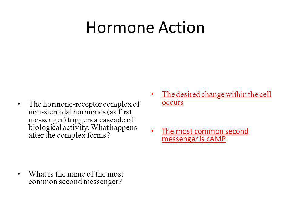Hormone Action The desired change within the cell occurs