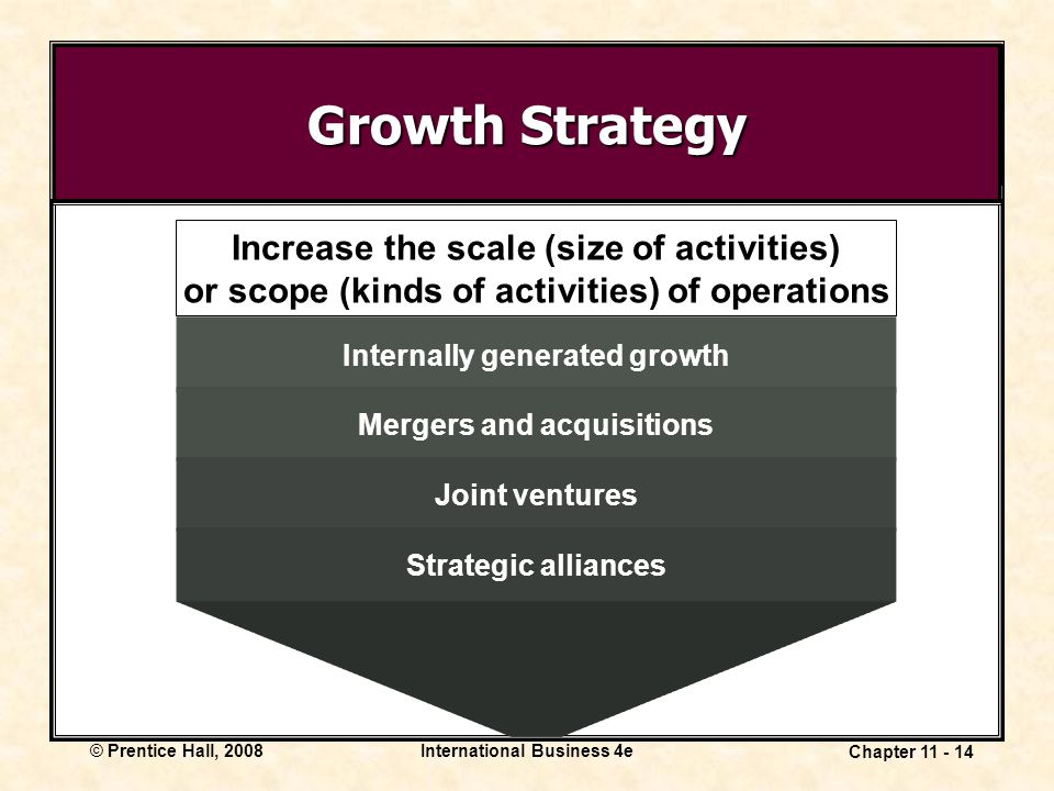 Growth Strategy Increase the scale (size of activities)