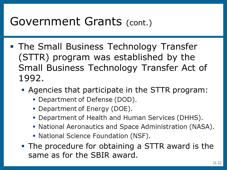 Government Grants (cont.)