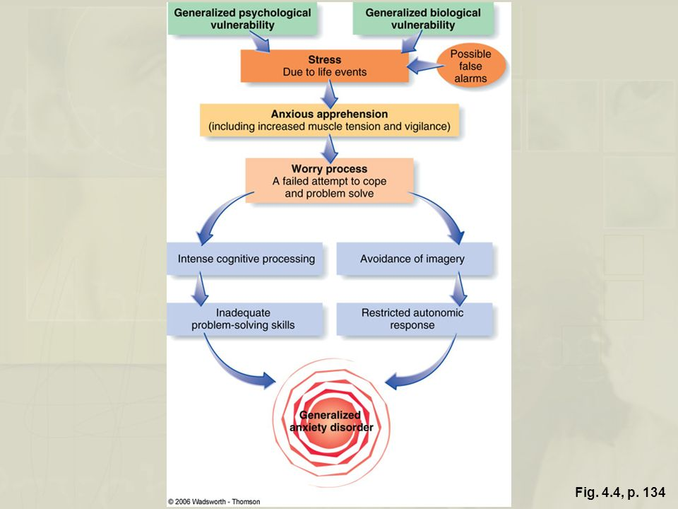 Figure 5.4 An integrative model of generalized anxiety disorder Fig. 4.4, p. 134
