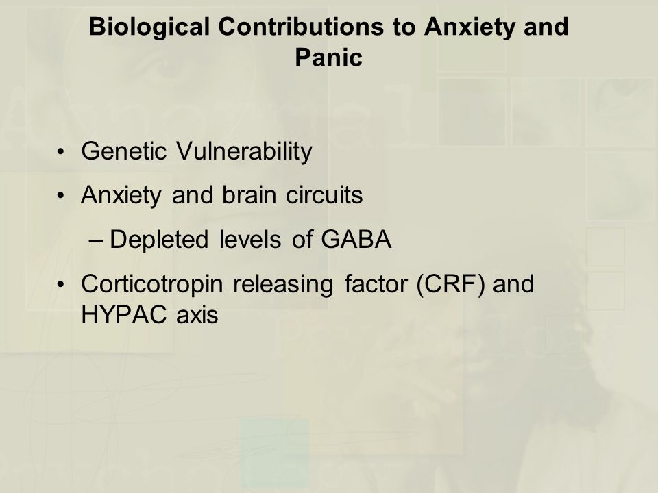 Biological Contributions to Anxiety and Panic