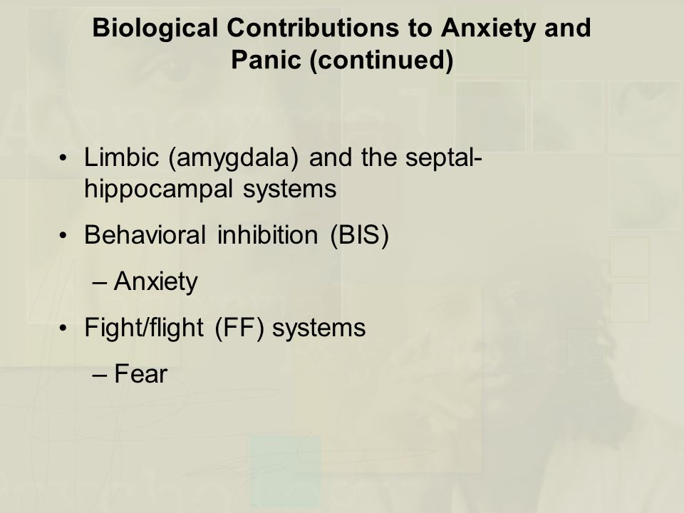 Biological Contributions to Anxiety and Panic (continued)