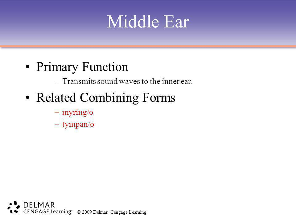 Middle Ear Primary Function Related Combining Forms