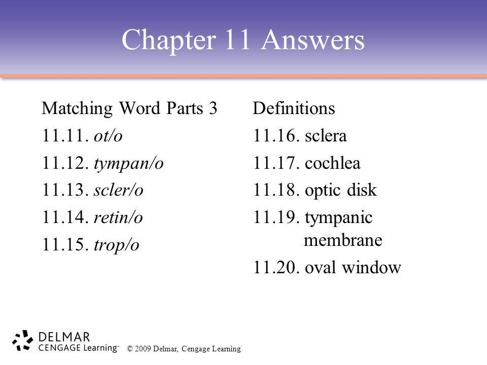 Chapter 11 Answers Matching Word Parts 3 11.11. ot/o 11.12. tympan/o