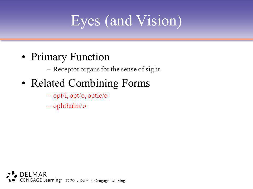 Eyes (and Vision) Primary Function Related Combining Forms