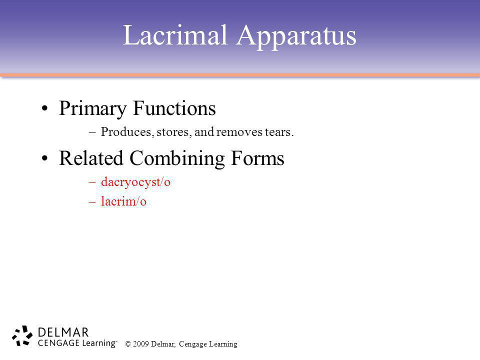 Lacrimal Apparatus Primary Functions Related Combining Forms