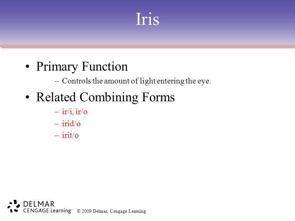 Iris Primary Function Related Combining Forms
