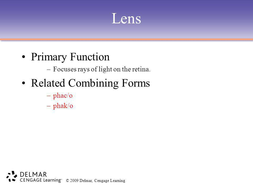 Lens Primary Function Related Combining Forms