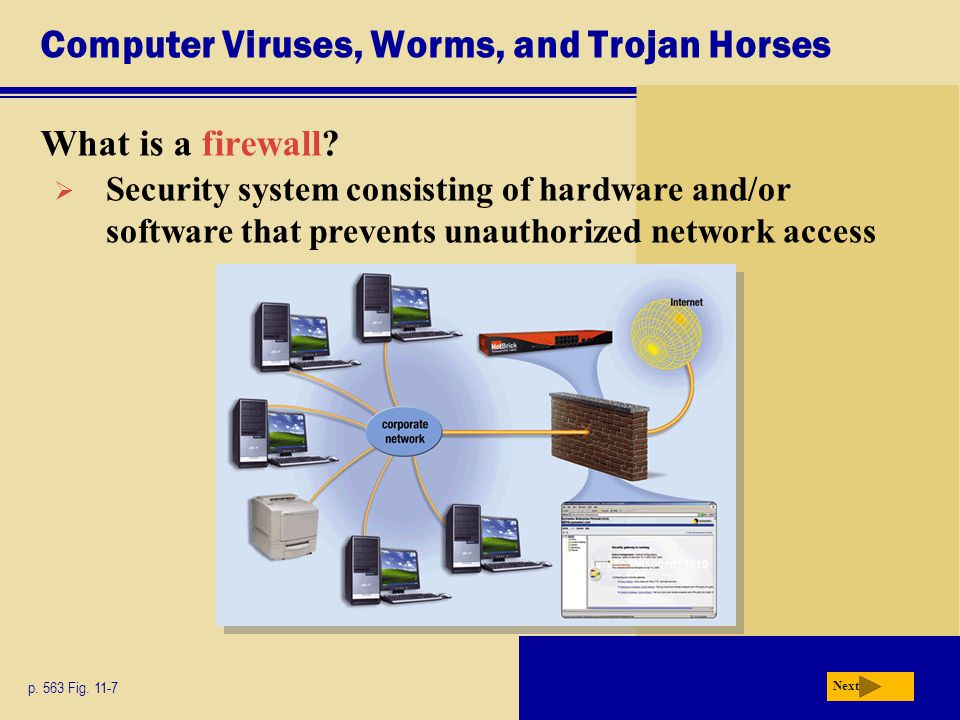 Computer Viruses, Worms, and Trojan Horses
