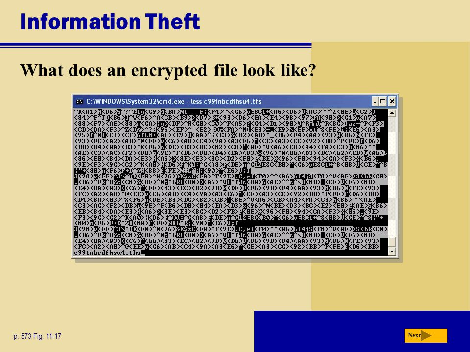 Information Theft What does an encrypted file look like