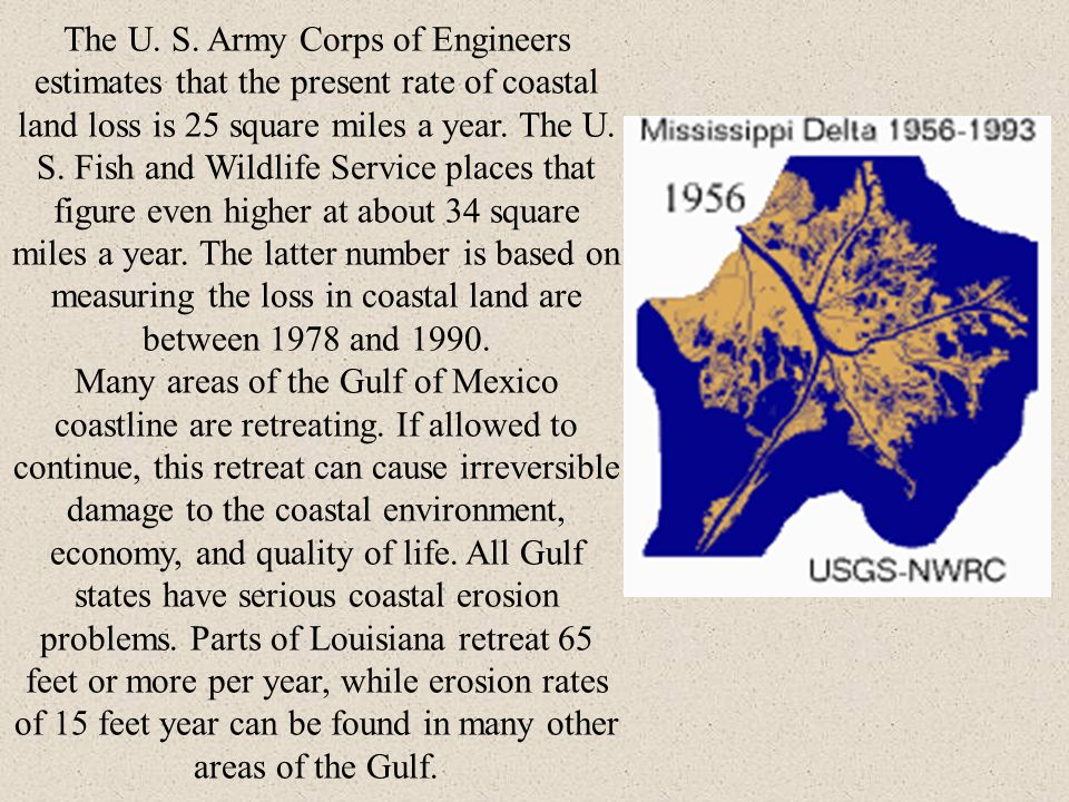 The U. S. Army Corps of Engineers estimates that the present rate of coastal land loss is 25 square miles a year. The U. S. Fish and Wildlife Service places that figure even higher at about 34 square miles a year. The latter number is based on measuring the loss in coastal land are between 1978 and 1990.