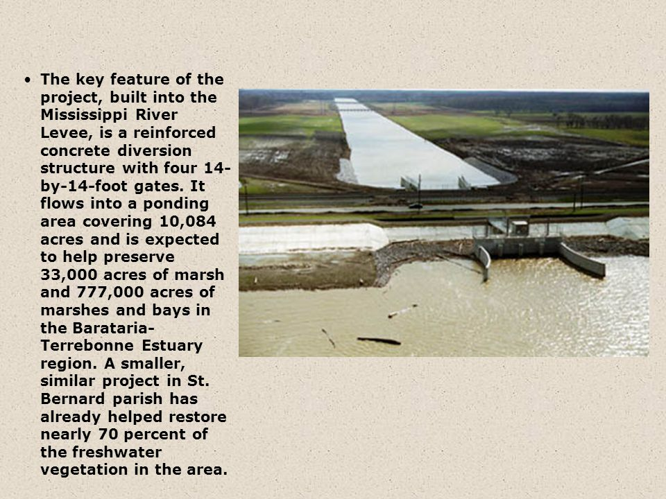 The key feature of the project, built into the Mississippi River Levee, is a reinforced concrete diversion structure with four 14-by-14-foot gates.