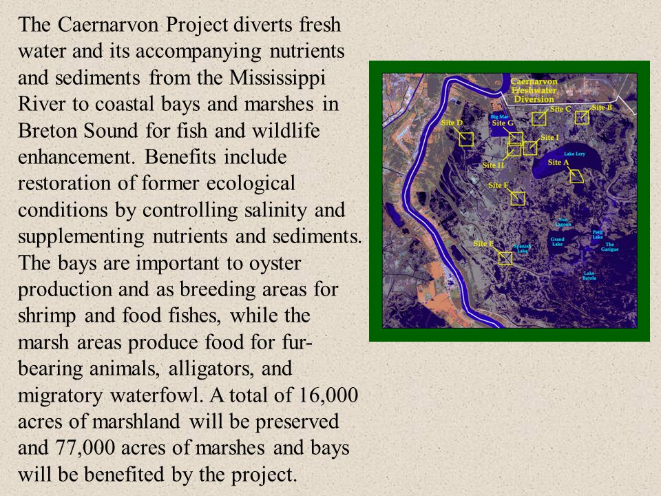 The Caernarvon Project diverts fresh water and its accompanying nutrients and sediments from the Mississippi River to coastal bays and marshes in Breton Sound for fish and wildlife enhancement.
