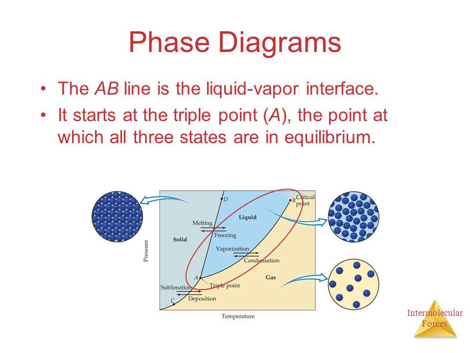 Phase Diagrams The AB line is the liquid-vapor interface.