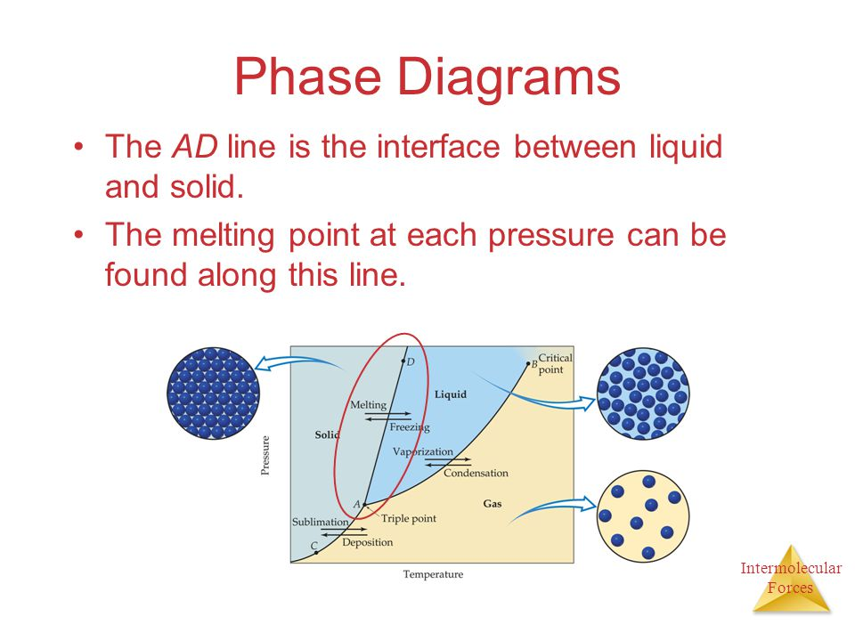 Phase Diagrams The AD line is the interface between liquid and solid.