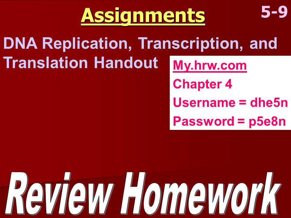 Assignments 5-9. DNA Replication, Transcription, and Translation Handout. My.hrw.com. Chapter 4.