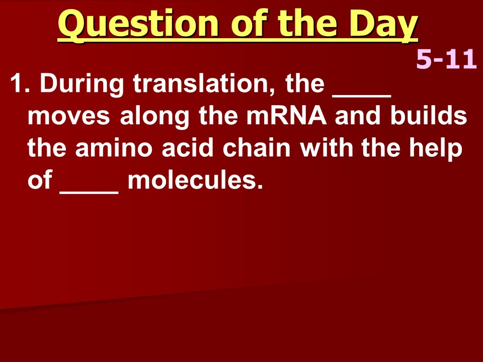 Question of the Day 5-11.