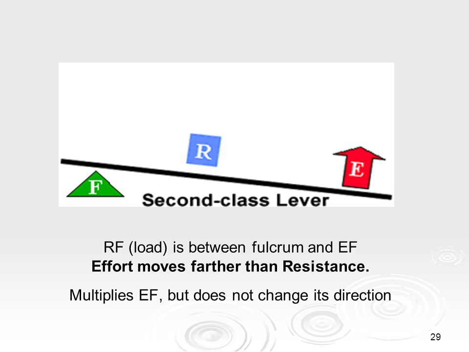 RF (load) is between fulcrum and EF Effort moves farther than Resistance.
