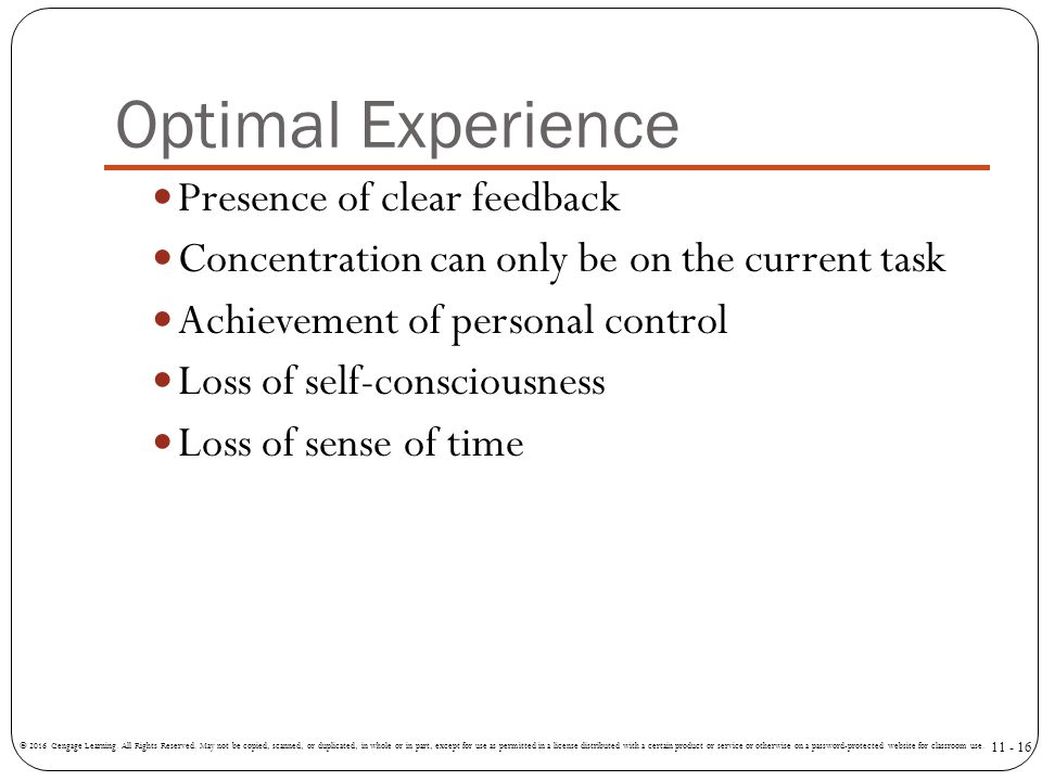 Optimal Experience Presence of clear feedback