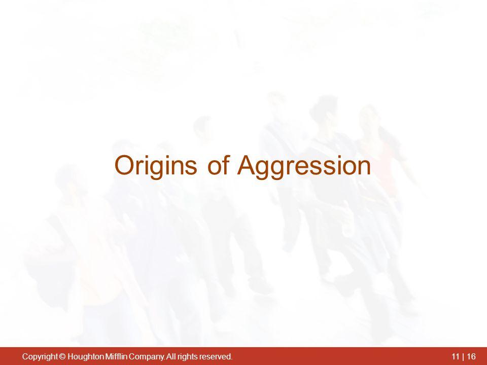 Origins of Aggression