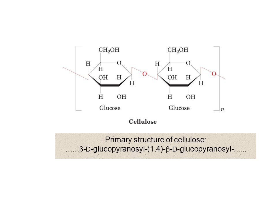 Primary structure of cellulose:
