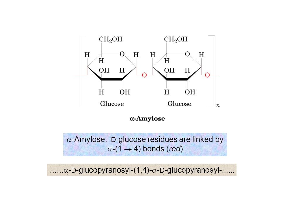 a-Amylose: D-glucose residues are linked by a-(1 ® 4) bonds (red)