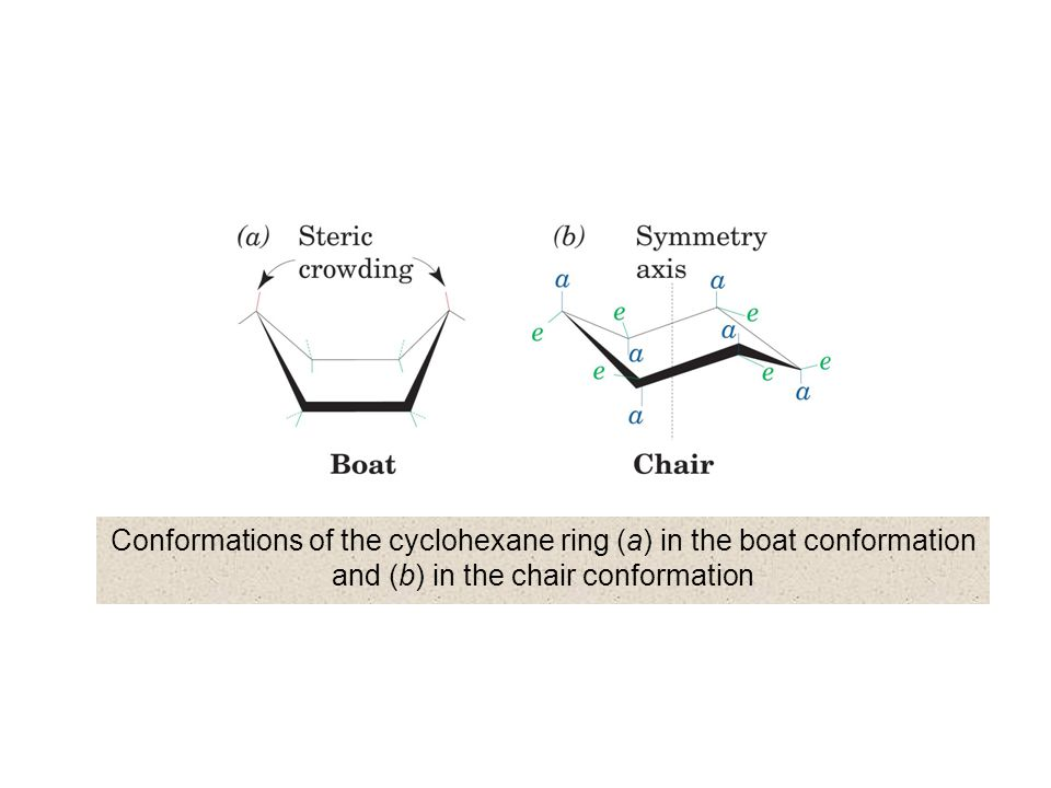 Conformations of the cyclohexane ring (a) in the boat conformation and (b) in the chair conformation