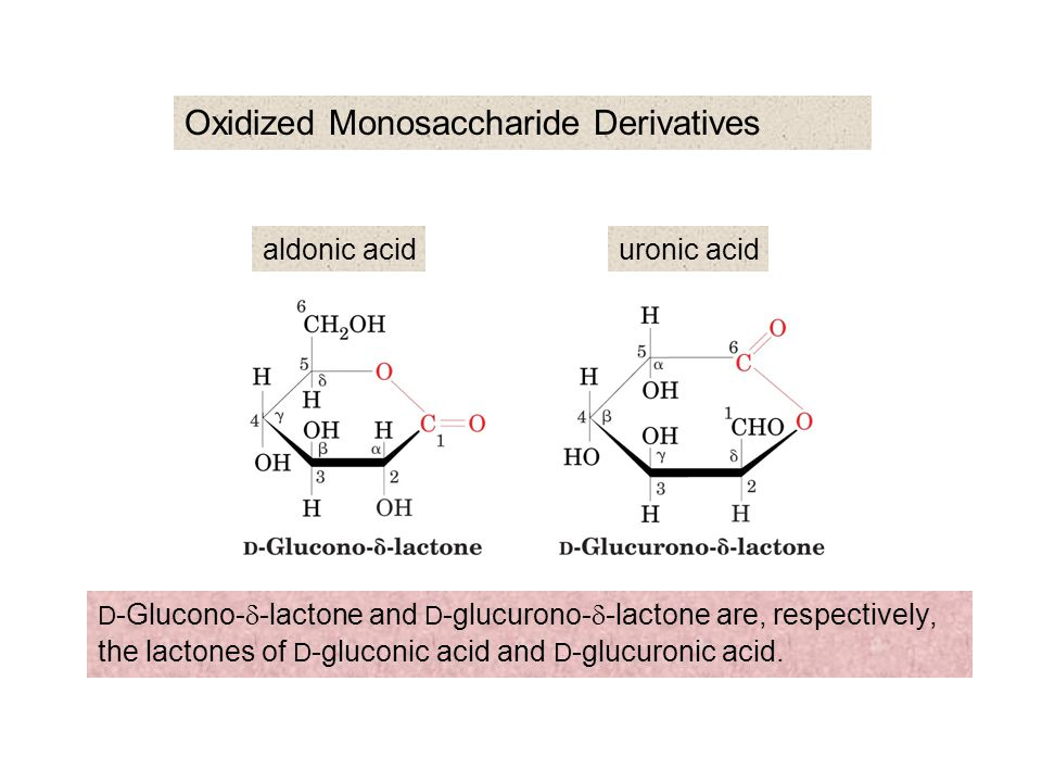 Oxidized Monosaccharide Derivatives