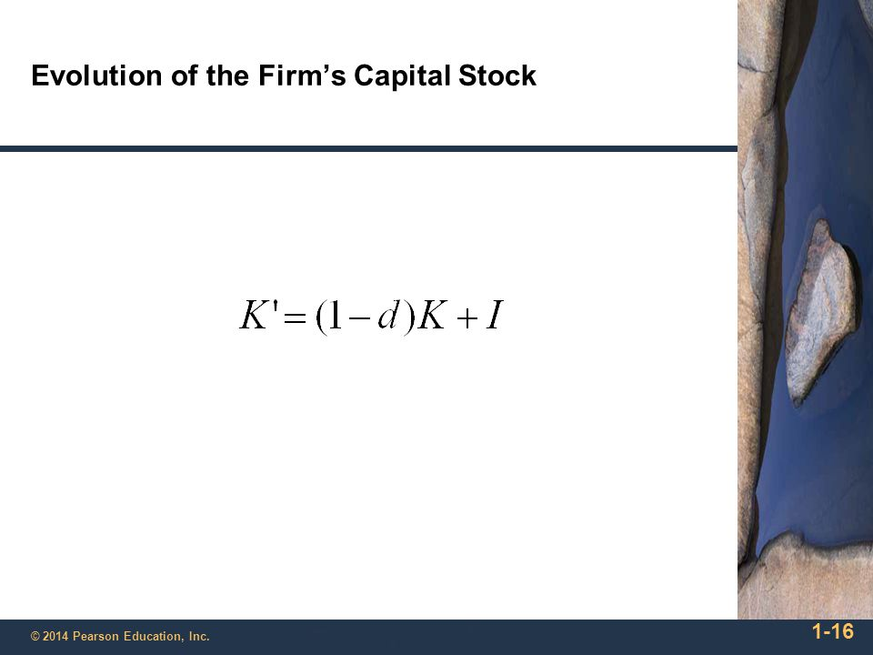 Evolution of the Firm's Capital Stock