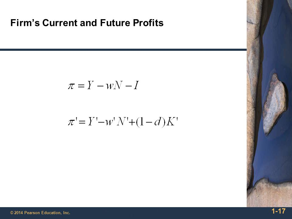 Firm's Current and Future Profits
