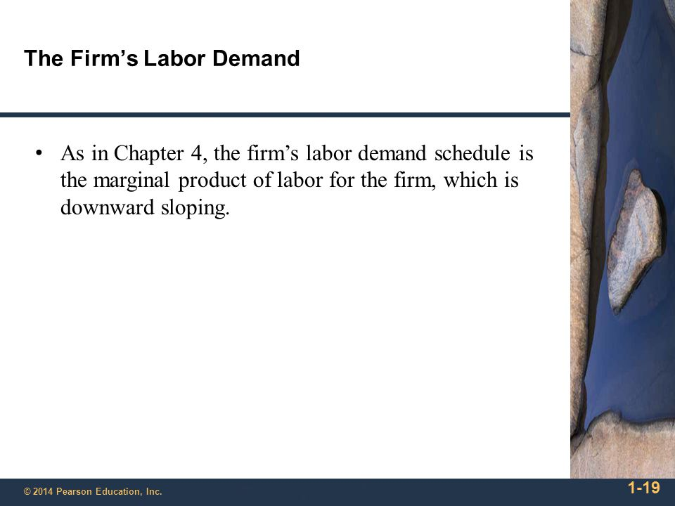 The Firm's Labor Demand