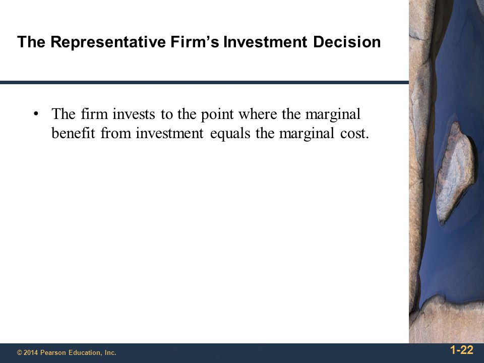The Representative Firm's Investment Decision
