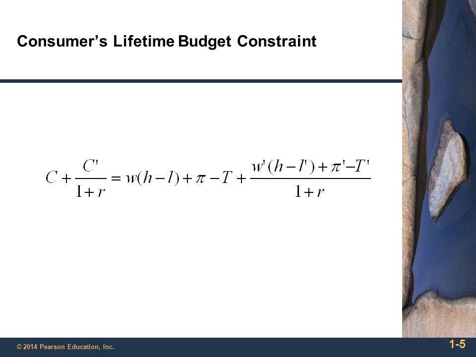 Consumer's Lifetime Budget Constraint