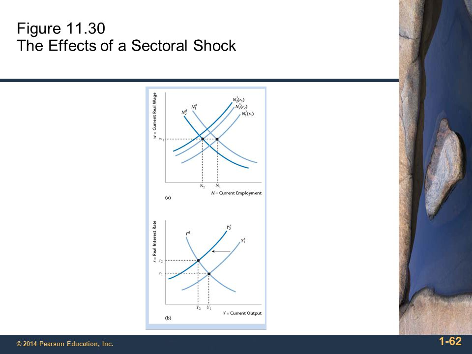 Figure 11.30 The Effects of a Sectoral Shock