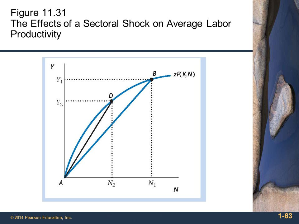 Figure 11.31 The Effects of a Sectoral Shock on Average Labor Productivity