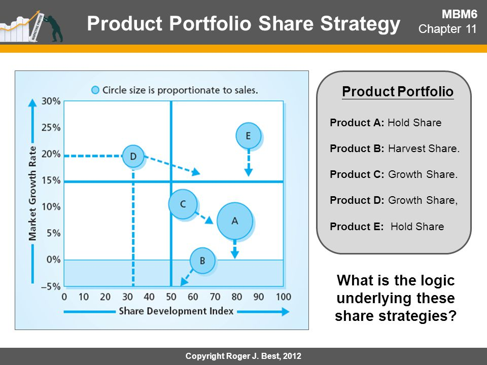 Product Portfolio Share Strategy