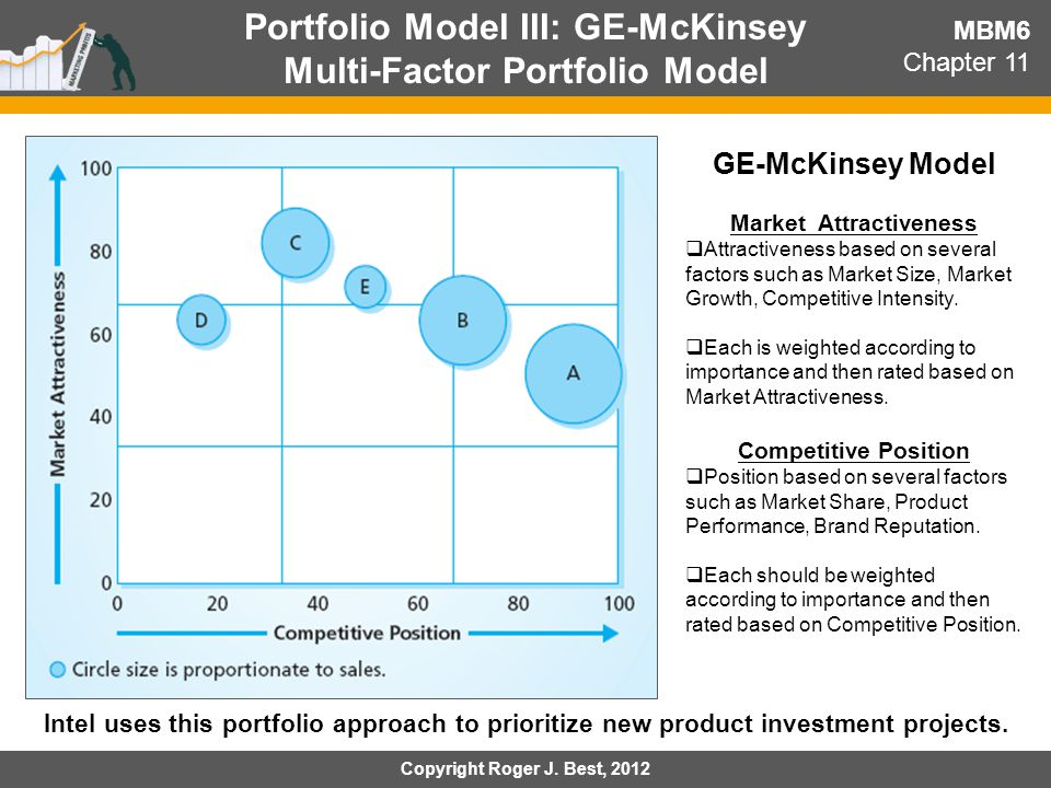 Portfolio Model III: GE-McKinsey Multi-Factor Portfolio Model