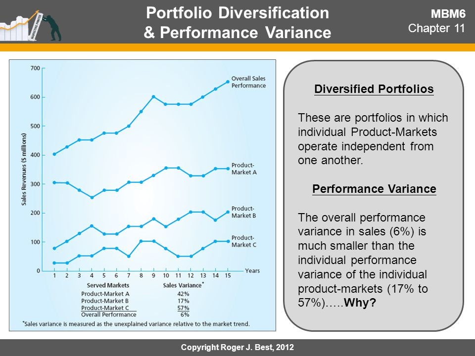 Portfolio Diversification & Performance Variance